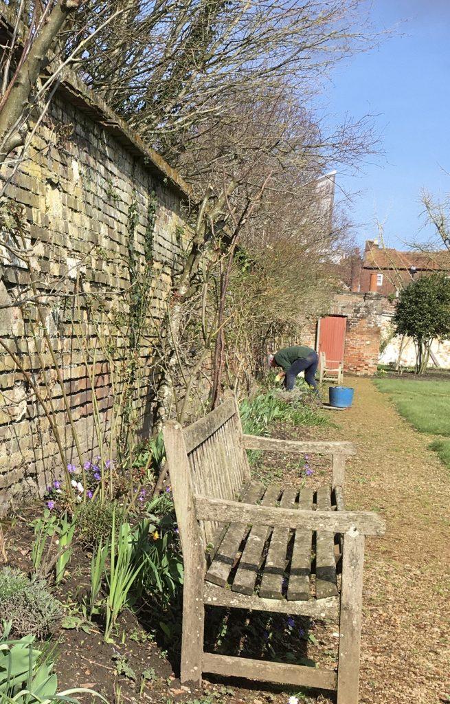 Gardeners Blog 19th March 2021