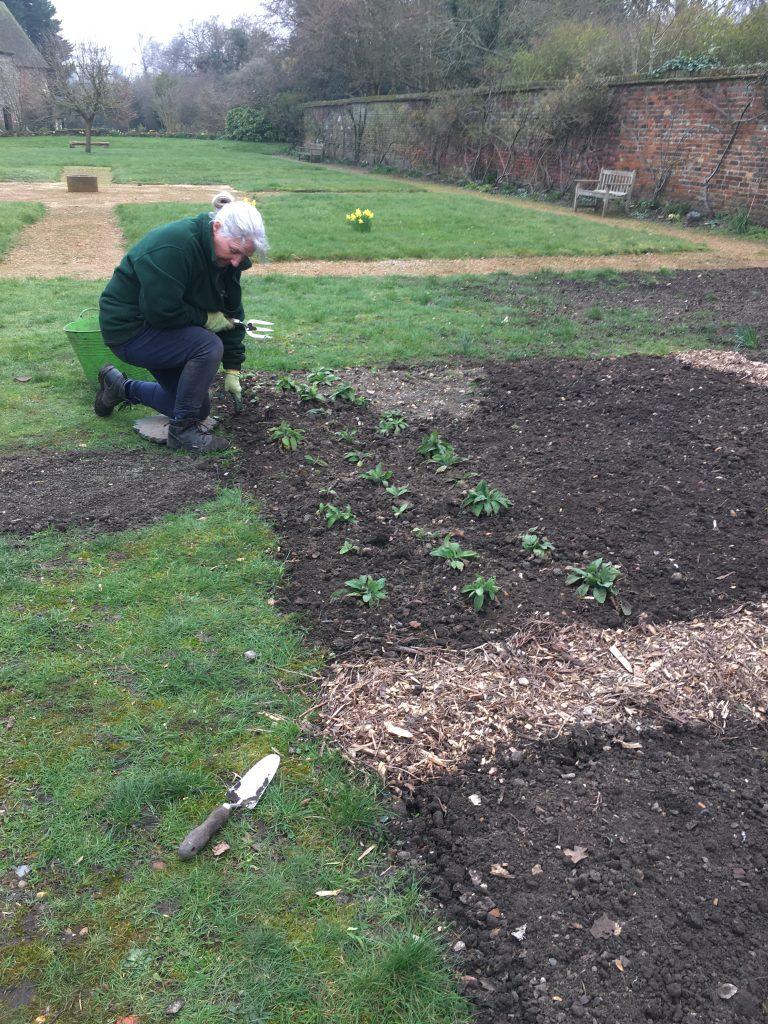 Gardeners Blog 5th March 2021